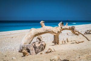الشواطئ يفكاس